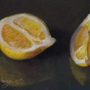 080808a1122-lemon-slices