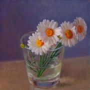 a1256-daisy-flower-in-a-glass-cup