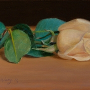 110909-rose
