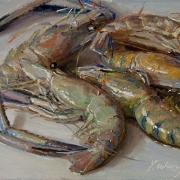 130924-shrimps-1