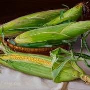 131005-fresh-ears-of-corn
