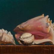 140717-seashells-8x10