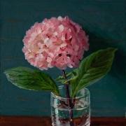 150908-hydrangea-flower
