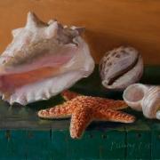 159022-seashells-still-life-painting