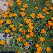 160226-poppy-flower-commission