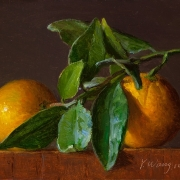 160311-clementine-orange-tangerine