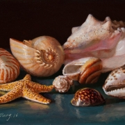 170124-seashells