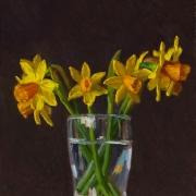 170408-daffodil-flower