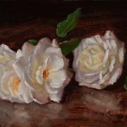 170622-white-rose-flower