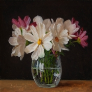 171007-cosmos-flower
