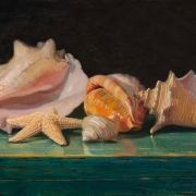 190320-seashells-12x9
