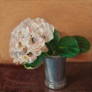 190613-hydrangea-flower-8x8