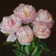 200105-peony-flower-8x8