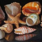 200218-seashells-16x8
