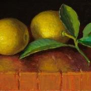 200423-two-lemons-5-and-half-x9