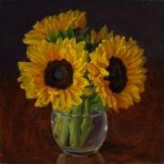 200824-sunflower-8x8