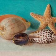 200916-seashells-8x6