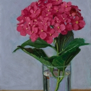200917-pink-hydrangea-in-a-glass-cup-7x10