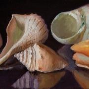 210330-seashells-11