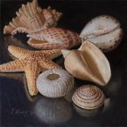 210401-seashells-commission-8x8