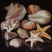 210713-seashells-10x10