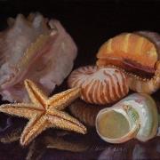 210818-seashells-10x8