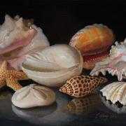 211012-seashells-12x9