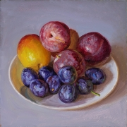 211510-plums-and-prunes-8x8