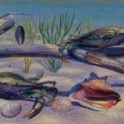 110909-commission-crabs-14x5
