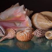 201029-seashells-commission-12x9