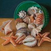 170706-seashells