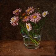 170710-flower-daisy